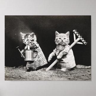 Póster Poster vestido lindo del vintage de los gatos