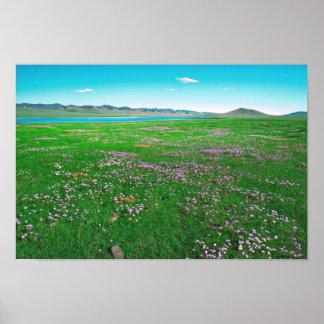 Póster Prado verde de la primavera