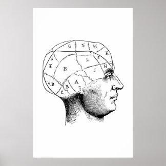 Poster principal del ejemplo de la anatomía póster