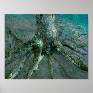 Póster Raíz de un árbol