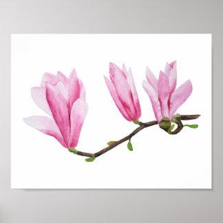 Póster Rama rosada de la magnolia en la pintura de la