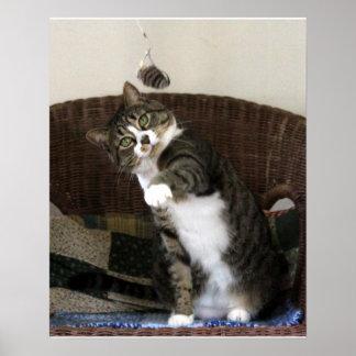 Póster Ratón del bateo del gato
