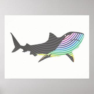 Póster Remolino del tiburón del color