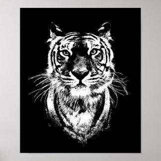 Póster Retrato impresionante del gato de tigre. Fauna