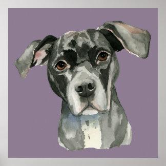 Póster Retrato negro de la acuarela del perro del pitbull