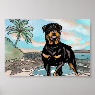 Póster Rottweiler que juega en la playa de Hawaii