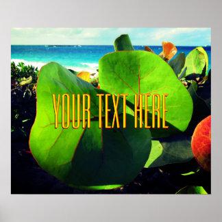 Póster Su propio texto sobre una visión tropical