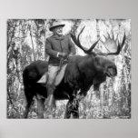 Póster Teddy Roosevelt que monta un alce de Bull