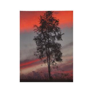 Poster tempestuoso de madera de la puesta del sol