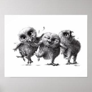 Póster Three Crazy Owls - Corujas