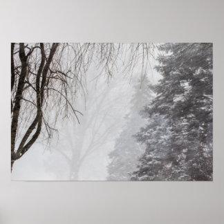 Póster Tormenta del invierno, Ohio