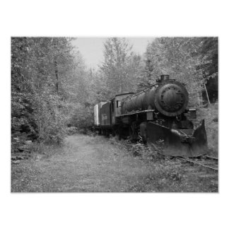 Póster Tren jubilado del vapor