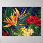 Poster tropical de la bella arte del paraíso