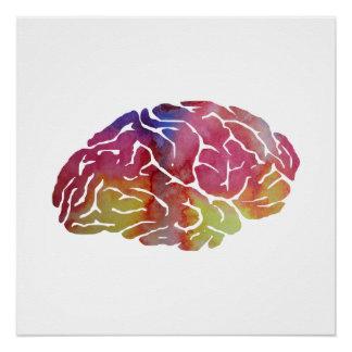 Póster Un cerebro
