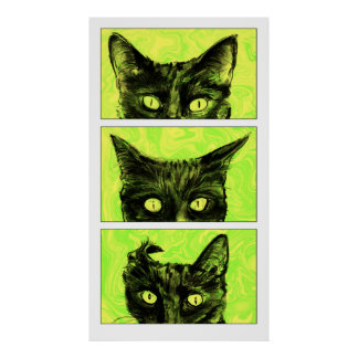 Póster Un estudio de los oídos de gato