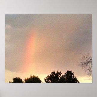 Póster Un segmento del arco iris, se revela sobre árboles