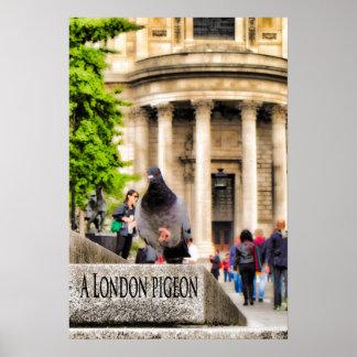 Póster Una paloma de Londres
