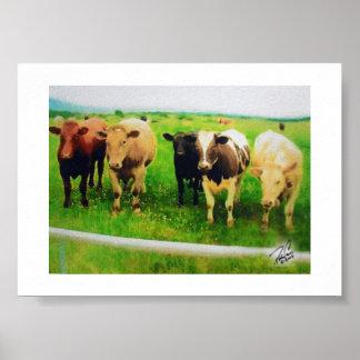 Póster Vacas