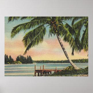 Póster vintage de las palmeras