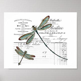 Póster Vintage, Retro diseño Francia - libélula, insecto