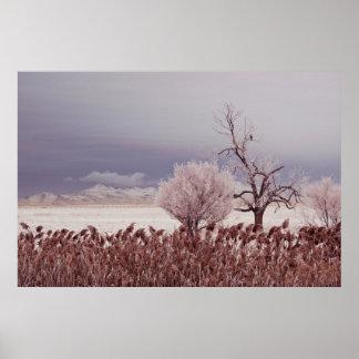 Póster Vista congelada de la isla del antílope - Utah -