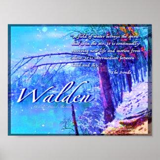 Póster Walden