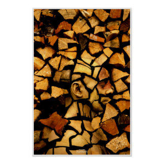 Póster Woodblock by Johannes Stötter