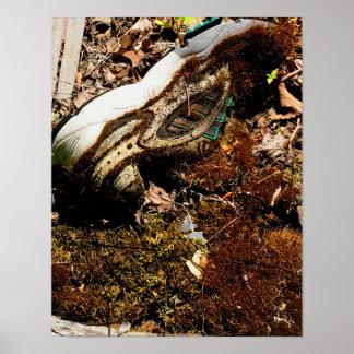 Póster zapato cubierto en musgo