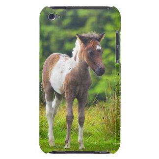 Potro derecho adorable del potro de Dartmoor Funda Para iPod De Barely There