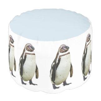 Pouf Pingüino divertido marzo