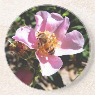 Práctico de costa - abeja en un color de rosa salv portavasos