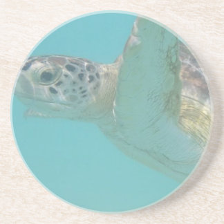 Práctico de costa de la tortuga portavasos