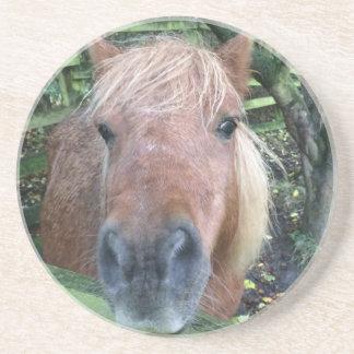Práctico de costa del caballo posavasos