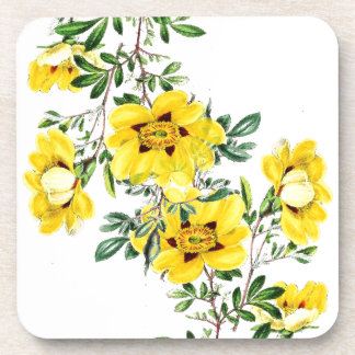 Práctico de costa floral de té de la flor botánica posavasos