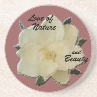 """Práctico de costa-Magnolia de piedra """"amor de la Apoyavasos"""