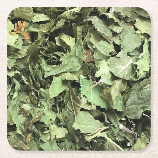 Práctico de costa verde de la hoja posavasos de papel cuadrado
