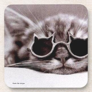 Práctico de costa vivo de la bebida del gato más posavasos para bebidas