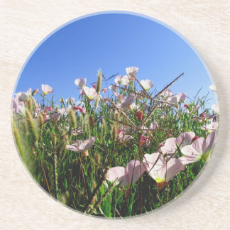 Práctico de costa - Wildflowers Portavasos