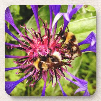 Prácticos de costa de la abeja posavasos