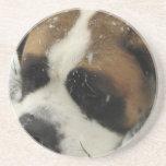 Prácticos de costa del perro de St Bernard Posavasos Personalizados