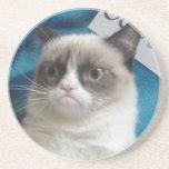 Prácticos de costa gruñones del gato posavasos diseño