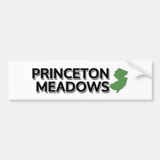 Prados de Princeton, New Jersey Pegatina Para Coche