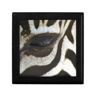 Presente blanco y negro del regalo del safari del  caja de regalo