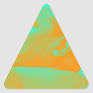 Presidente Barack Obama 4aa Pegatina Triangular