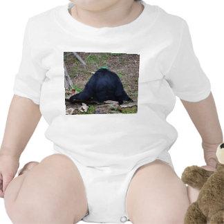 primate del animal que se sienta trasero trajes de bebé