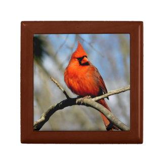 (Primavera) caja de regalo de madera cardinal