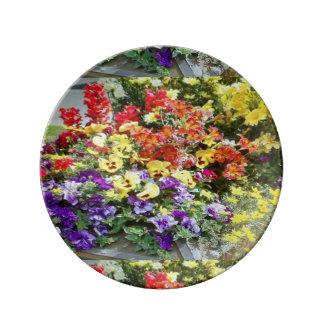 Primavera en Breckenridge Plato De Porcelana