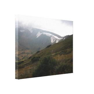 Primavera en los Rockies Lienzo