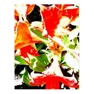Primavera que despierta la colección floral postal