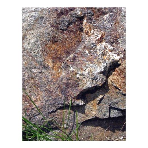 Primer de la roca de Brown en un paisaje herboso Tarjetas Publicitarias